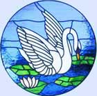 white Swan circular stained and leaded glass window